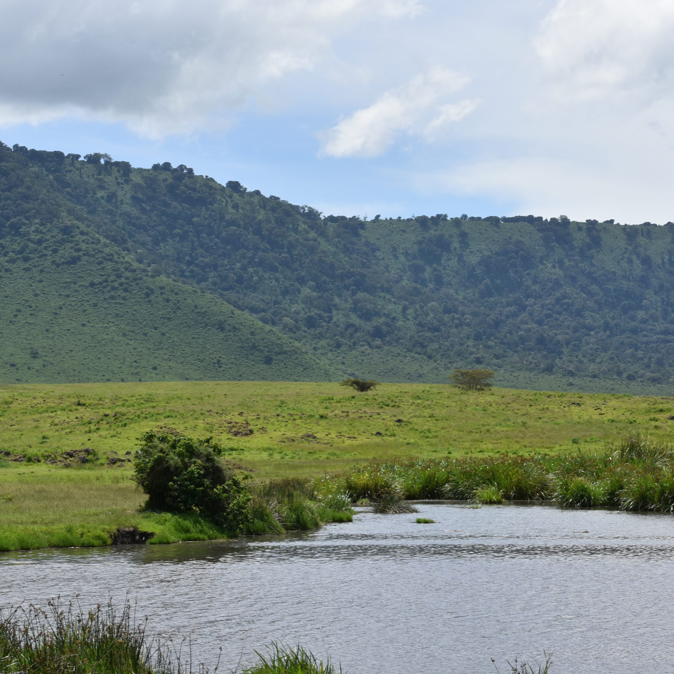 Day 2: Kudu Lodge - Ngorongoro Crater - Lake Burunge Tented Camp